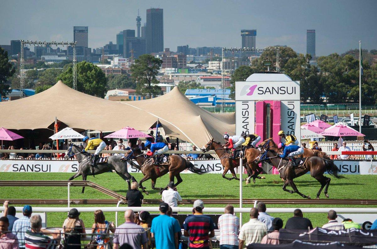 Sansui Horses